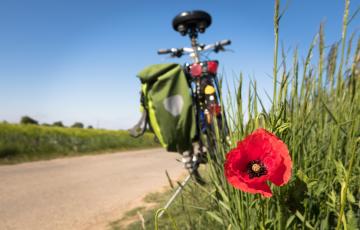 Által-ér kerékpártúra
