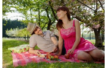 Piknik Randi